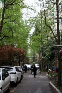 Quxi Road 2
